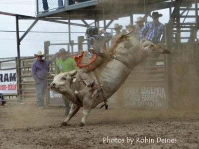 Photo of a bull rider at a rodeo