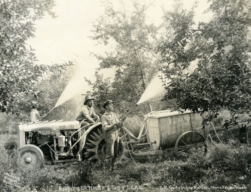Lake Chelan's Orchard Arsenic & Lead Legacy