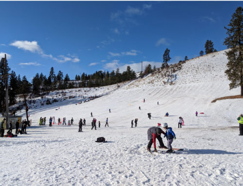 Echo Valley Ski and Tubing Hill Open MLK Weekend