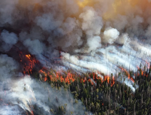 Commissioner Hilary Franz Signature Legislation for Long-term Wildfire, Forest Health Funding Passes House
