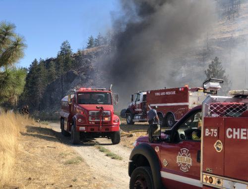 Brush Fire Burns Above Washington Creek Road