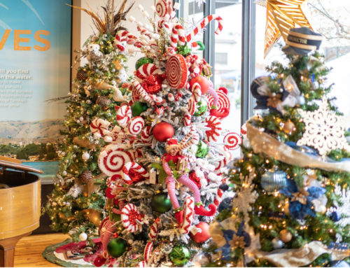 A New Look For Lake Chelan Festival of Trees