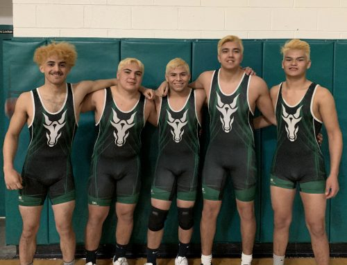 CHS Sends Five Wrestlers to State