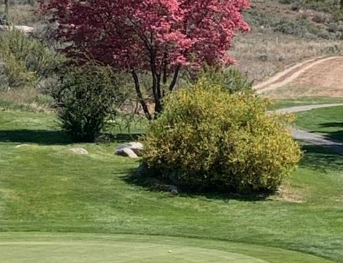 Lake Chelan Ladies Golf Tee Time