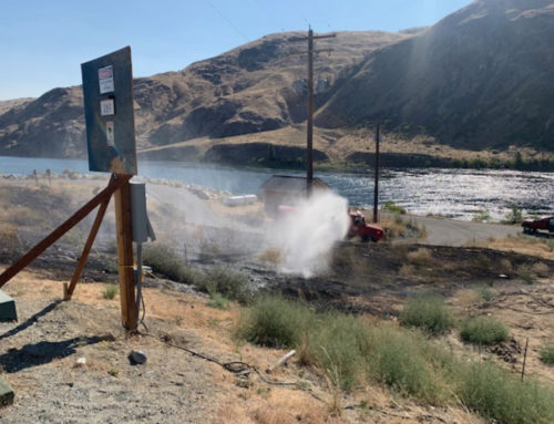 Brush Fire on Hidden Lane Quickly Contained